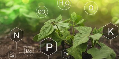 Conservación, sanidad y nutrición del suelo